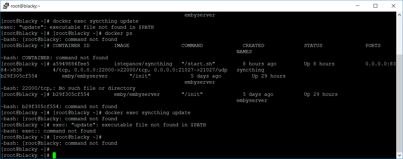 Permission denied when updating Syncthing from its webGUI
